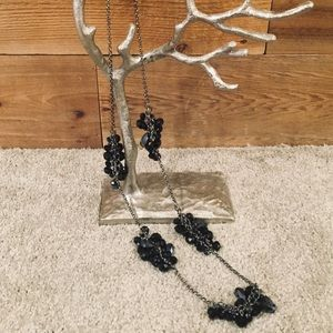 Jewelry - Long Silver and Black Necklace